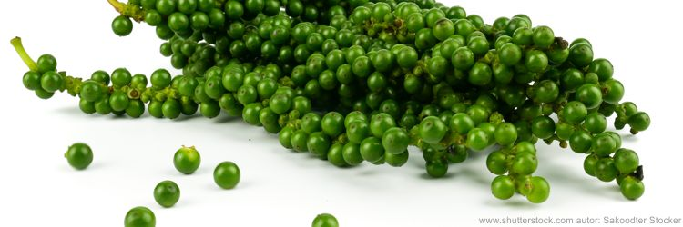 Pepř zelený, Green pepper,